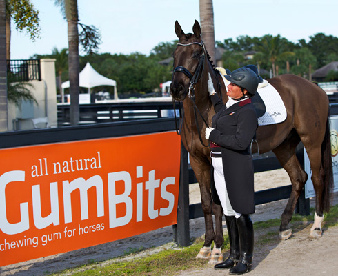 Testimonials - GumBits - All Natural Chewing Gum For Horses